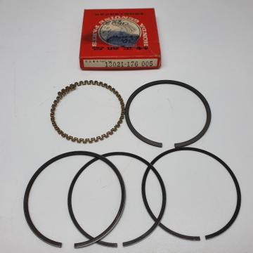 13021-176-005 nw Piston Ringset 0.25 XR80