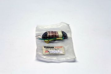 2RV-81313-20 coil lightning FS1