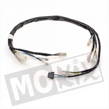 WIRING HARNESS  HONDA WALLAROO BE/FR (UPPER) ELEC