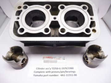 4A1-11311-00 Cilinder complete with pistons Yamaha TZ250-G 1979-1980 in good conditions